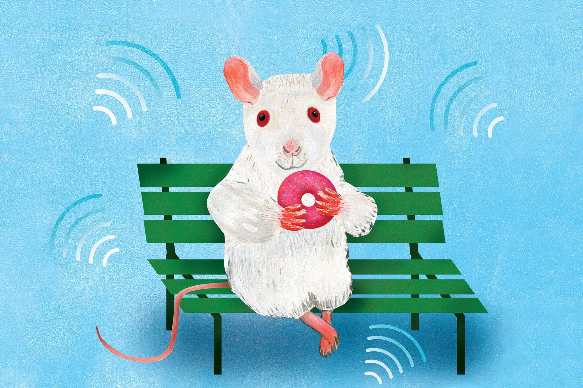 Bench mouse illustration